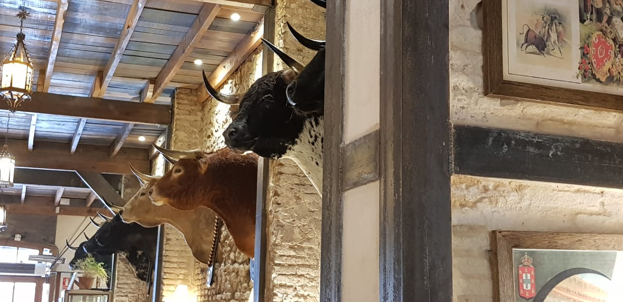 Bulls honoured on the wall at Baratillo in Seville