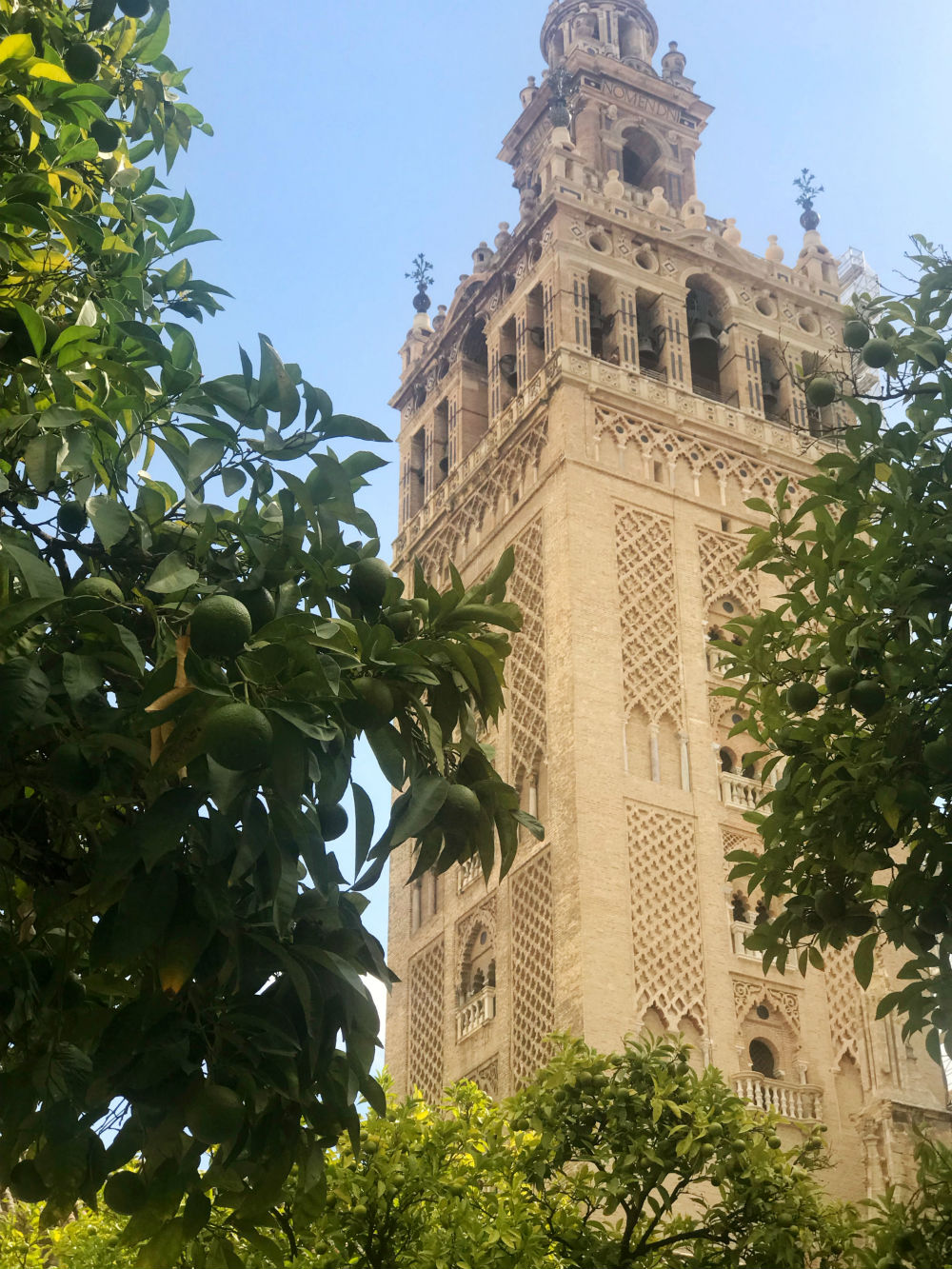 Seville's cathedral, Santa Maria de la Sede, is the largest Gothic cathedral in the world.