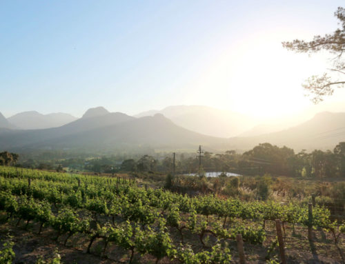 Indulge in a Franschhoek mystery weekend.