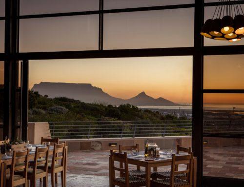 Senses of Sauvignon Blanc, Durbanville Hills.