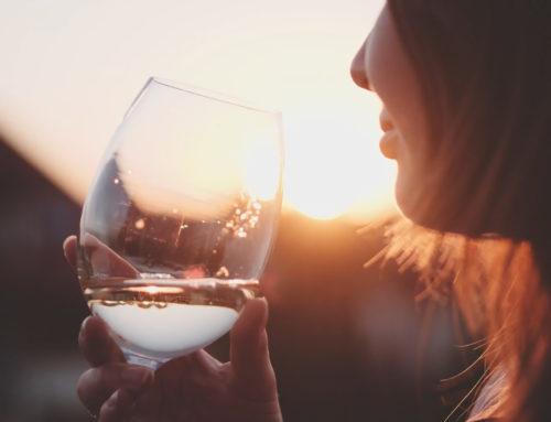 The Sauvignon Blanc Wine Route, Constantia.